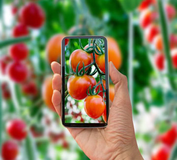 Best Garden Apps